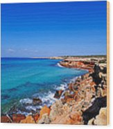 Cala Saona On Formentera Wood Print