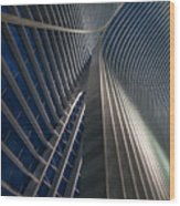 Calatrava Lines At The Blue Hour Wood Print