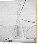 Calatrava Wings Wood Print