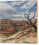 Calf Creek Wood Print