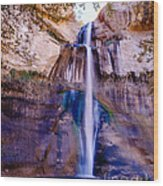 Calf Creek Falls  Wood Print