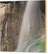Calf Creek Falls Ut Usa Wood Print