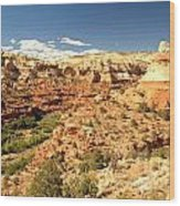 Calf Creek View Wood Print