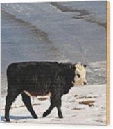 Calf Wood Print