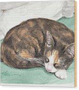 Calico Cat Sleeping Watercolor Portrait Wood Print