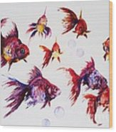 Calico Ryukin Goldfish Wood Print