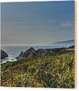 California - Big Sur 003 Wood Print