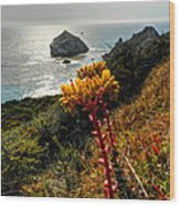 California - Big Sur 006 Wood Print by Lance Vaughn