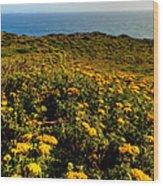California - Big Sur 007 Wood Print by Lance Vaughn