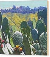 California Big Sur Flowers Wood Print