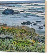 California Central Coast Near San Simeon Wood Print