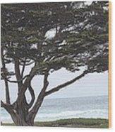 California Coast # 8 Wood Print