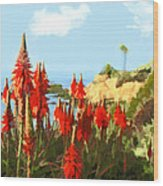 California Coastline With Red Hot Poker Plants Wood Print