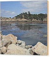 California Cove Wood Print