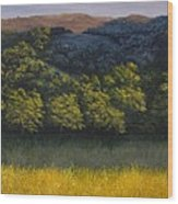 California Foothills Wood Print