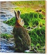 California Hare - 0297 Wood Print