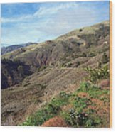 California Hillside Wood Print