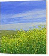 California In Spring Wood Print