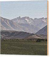 Bridgeport Cattle Ranch  Wood Print