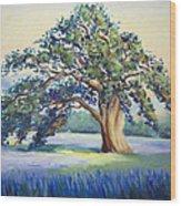 California Oak Wood Print