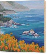 California Poppies Big Sur Wood Print