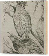 California Quails Lithograph Wood Print
