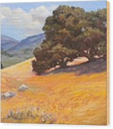 California Summer Wood Print