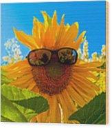 California Sunflower Wood Print by Bill Gallagher