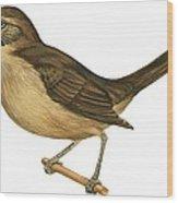 California Thrasher Wood Print