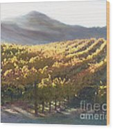 California Vineyard Series Vineyard In The Mist Wood Print by Artist and Photographer Laura Wrede