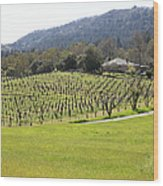 California Vineyards In Late Winter Just Before The Bloom 5d22073 Wood Print