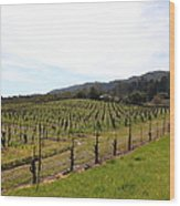 California Vineyards In Late Winter Just Before The Bloom 5d22114 Wood Print