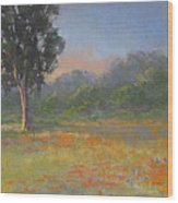 California Wildflowers Wood Print