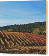 California Winery Apple Hill Wood Print