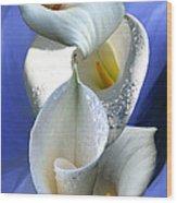 Calla Composition Wood Print