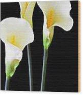 Calla Lilies In Triplicate Wood Print