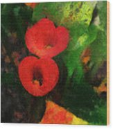 Calla Lilies Photo Art 03 Wood Print by Thomas Woolworth