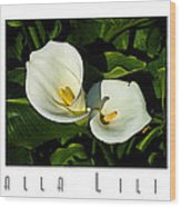 Calla Lilly Color Triptych With Title Only Wood Print