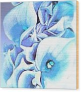 Calla Lilly So Soft Lilac And Blue Wood Print
