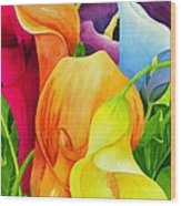 Calla Lily Rainbow Wood Print by Janis Grau