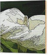 Calla Lily Sketch Wood Print