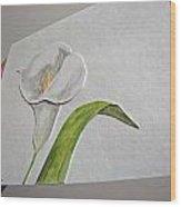 Callalily Card - Image Three Wood Print