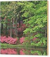 Callaway Gardens 1 Wood Print