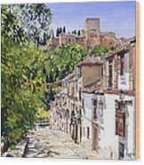 Calle Victoria Granada Wood Print