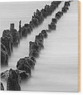 Calm Across The River Wood Print
