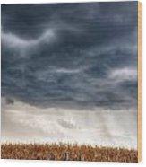 Calm Before The Storm 3 Wood Print by Rhonda Negard