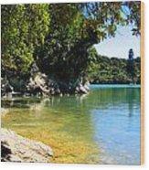 Calm Cove Wood Print