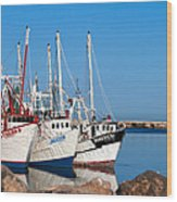 Calm Harbor Wood Print