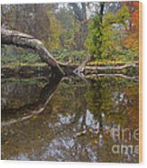 Calm On Big Chico Creek Wood Print
