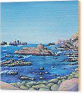 Calm Surf With Water Bird Wood Print